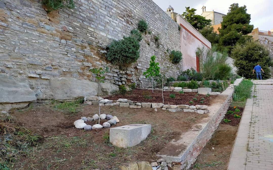 Cervera arranges the garden area of ​​the Portal dels Pous